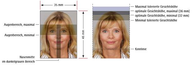 Passbildgröße bei biometrischen Passbildern